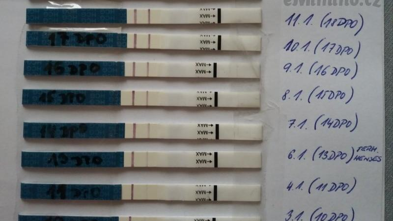 Čím později testujete těhotenství, tím je čárka silnější. Zdroj foto: diskuse eMimino