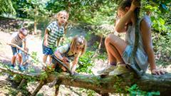Šumava s dětmi od jihu k západu: Tipy na výlety i gastro zážitky