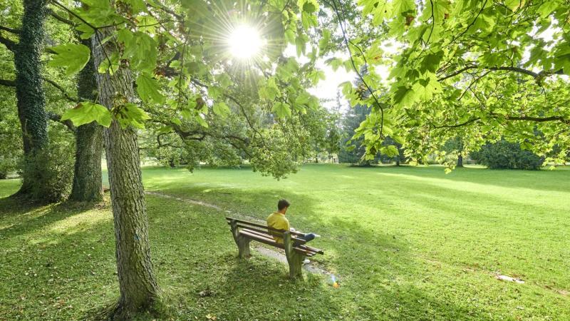 Park s místem k odpočinku